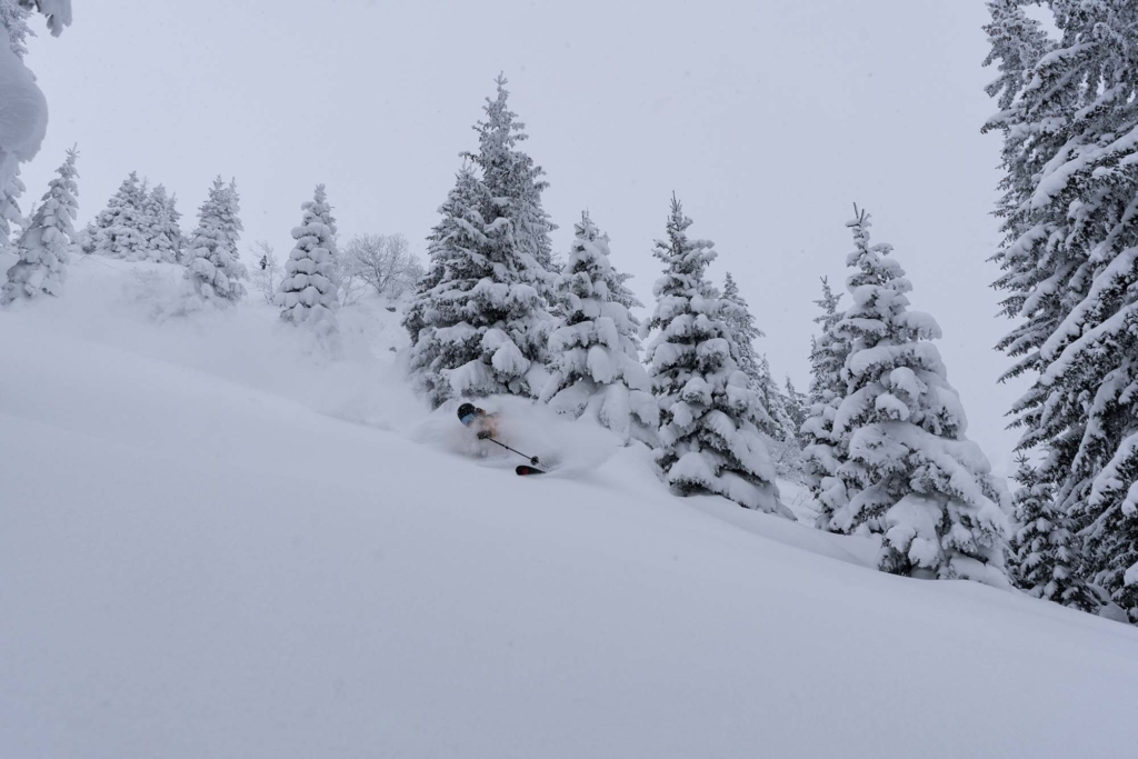 An image of a skier in snow.